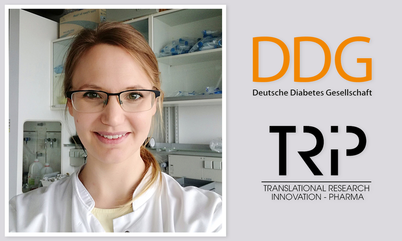 Anna Kraus (Division of Endocrinology, Department of Internal Medicine I) was awarded by the German Diabetes Society (DDG) for her research on vitamin D-mediated resolution of inflammation. The prize is endowed with 7500 EUR.